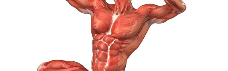 Preparati za izliječenje tegoba mišića i zglobova